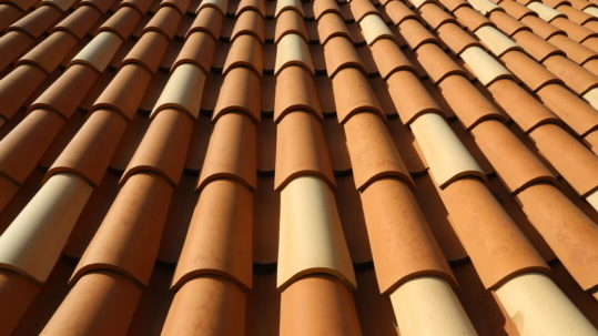 What's the Best Type of Roofing for Palm Beach County Homeowners?